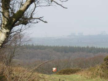 Lydeard Hill Jog 5 Spr 19 26