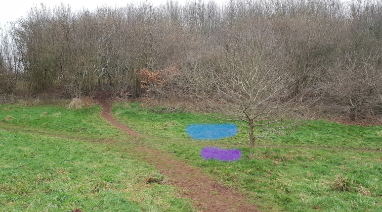 The blue area is ideal, but the purple area would be OK. Both are easily visible on the approach from Control 1 and lead the participant off in the correct direction for Control 3.