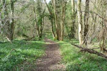 Henlade Hill path