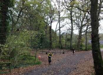Huish Woods 2