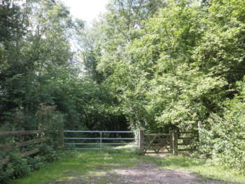 entrance to Adcombe Wood (at NE of area)