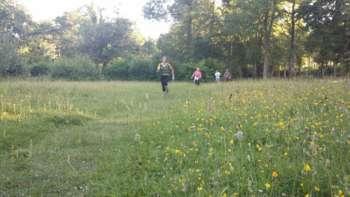 Thurlbear Meadow 2 900