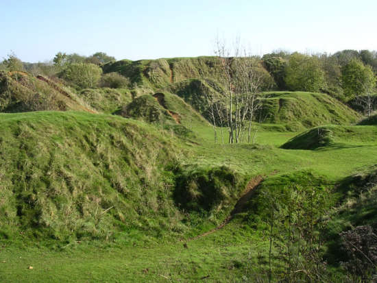 Old quarry spoil heaps, Ham Hill