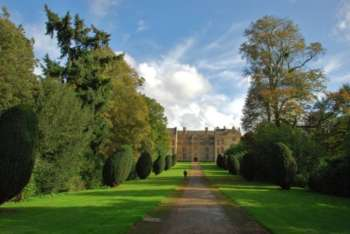 drive leading to Montacute House