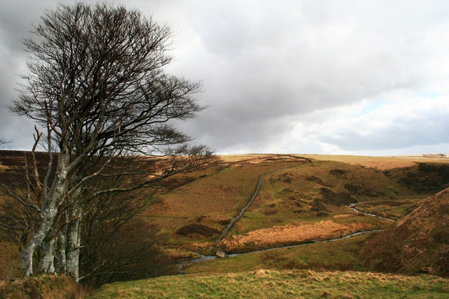 Barrow at Tom's Hill