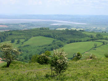 View from Cothelstone Hill