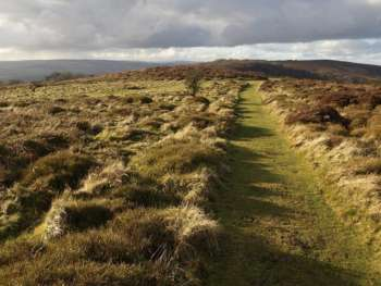 Path along Lydeard Hill