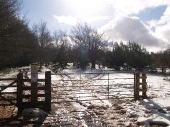 Drove road snow, near Triscombe Stone