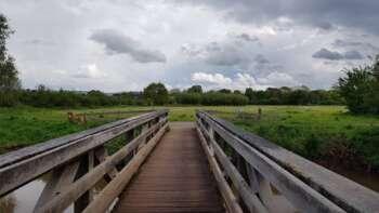 Bridge onto Longrun