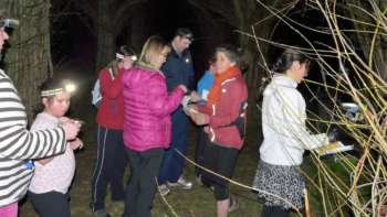 Night nav: relays at the Willow Cathedral