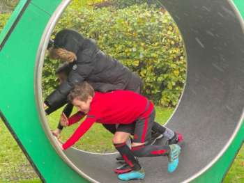 Vivary Hamster Wheel Teamwork