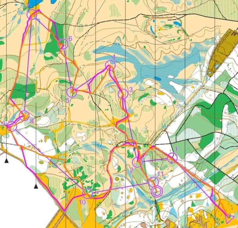 Holmsley '16- Green course- John Trayler (pink) & Pete Akers (orange)