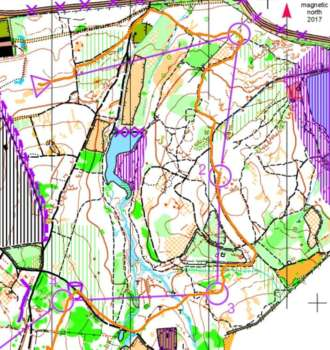Top runner's route on Sarah's course, Holmbush