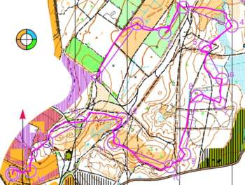 Winner's route on Sarah's course at Ambersham Common