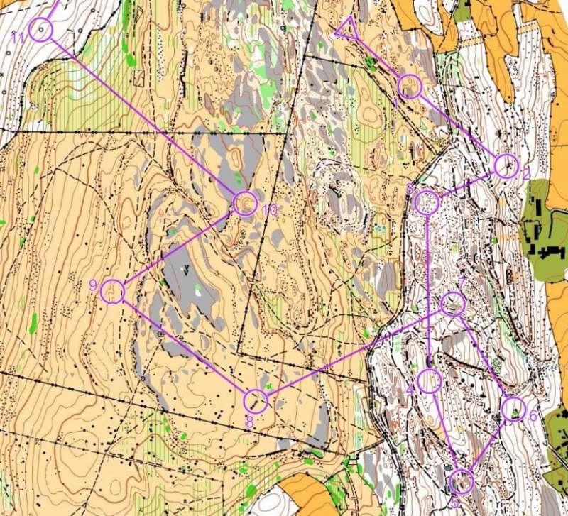 Rock (black) and limestone (grey) areas at Hampsfell & Eggerslack, 2014