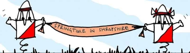 Springtime in Shropshire