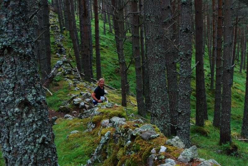 Runnable forest at Craeg Choinnich