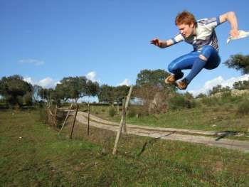 Vaulting a Fence