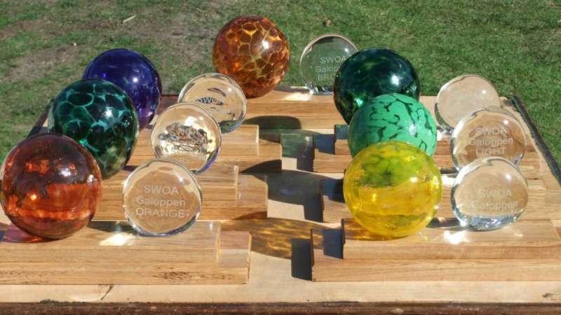 The South West League trophies