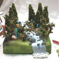 O Cake